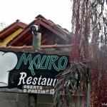 Visconde de Mauá: Mauro Jr