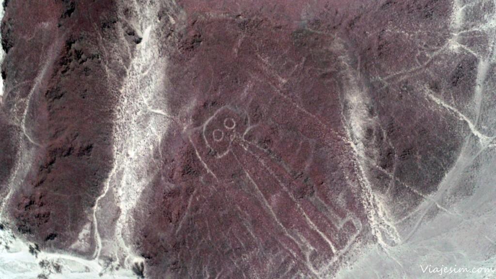nazca sobrevoo das linhas mochilao bolivia peru SAM_6417