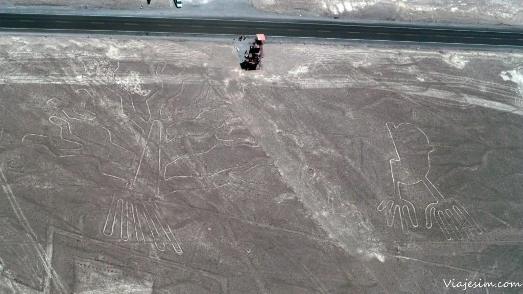 nazca sobrevoo das linhas mochilao bolivia peru SAM_6433
