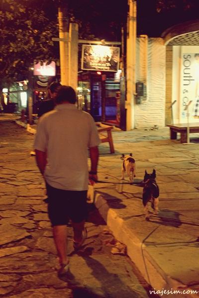 Viagem com cachorro Foucault em Buzios036
