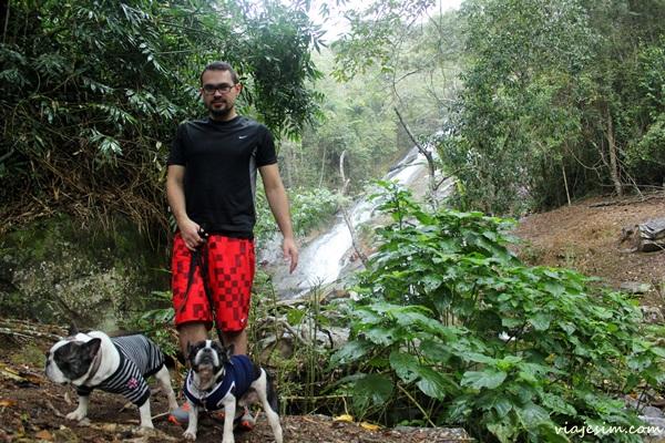 Viagem com cachorro serra petrópolis itaipava137