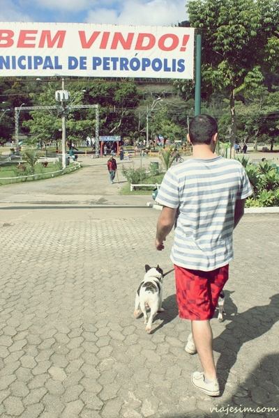viagem com cachorro petrópolis itaipava serra 300