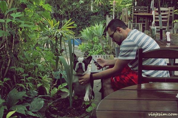 viagem com cachorro petrópolis itaipava serra 349