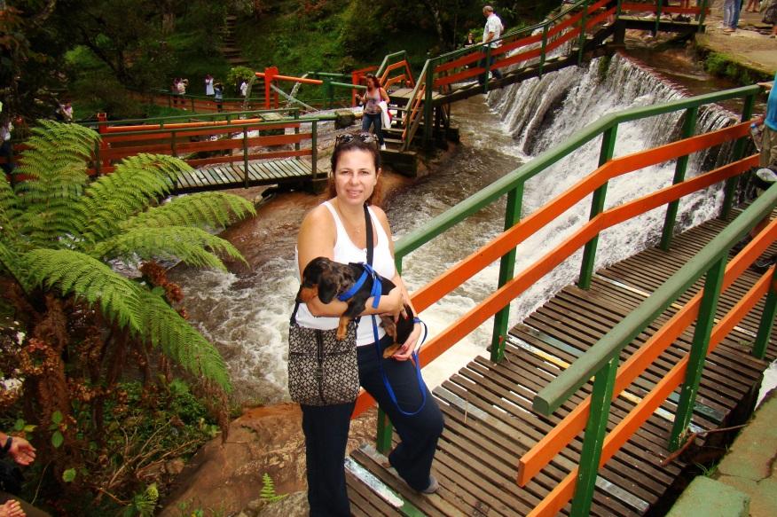 thesco cachoeira