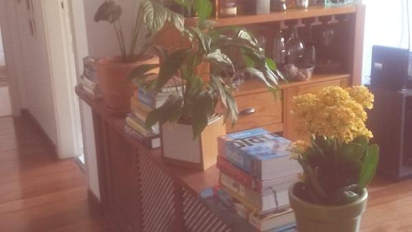17 idéias para fazer em casa sem gastar muito dinheiro