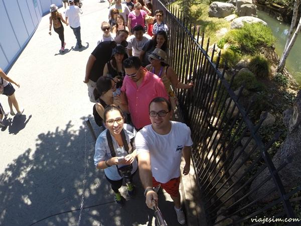 disneyland disney california adventures