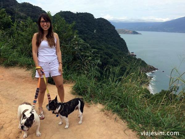 dicas para viajar com cachorro de carro