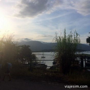 Viajar com cachorro road trip rio sao paulo