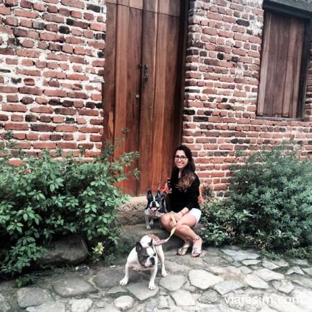 Viajar com cachorro de carro Maresias Paraty IMG_7378