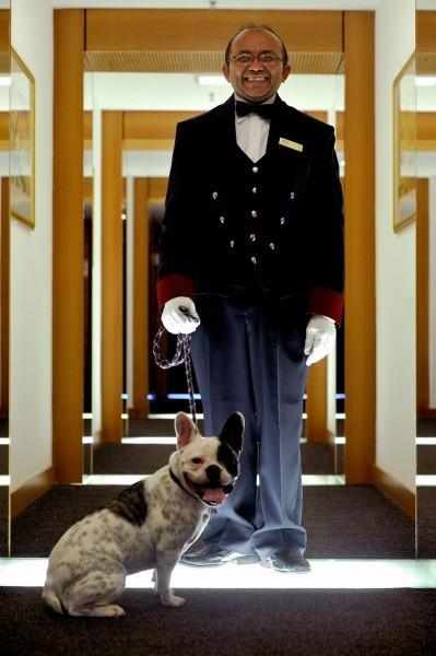 hotel pet friendly são paulo