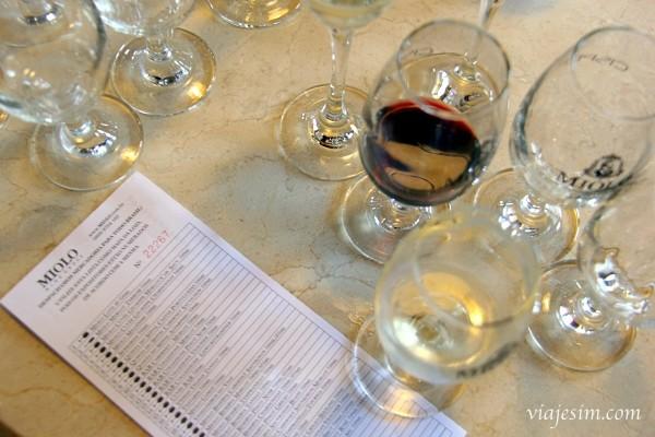 Visita à Vinícola Miolo: visita guiada x Minicurso de Degustação