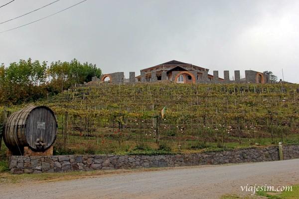 Caminhos de Pedra bento gonçalves vale dos vinhedos
