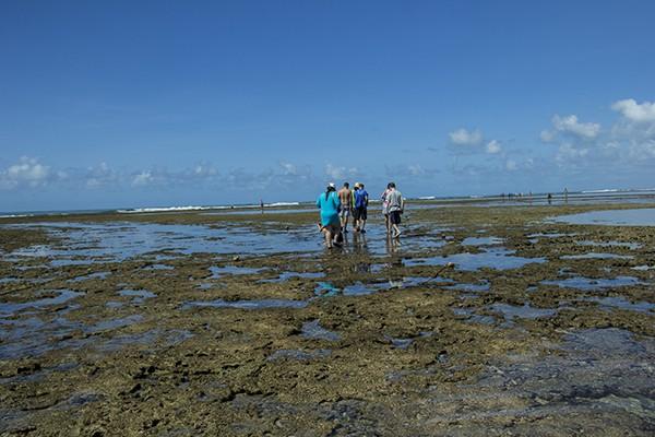 Dicas práticas para sua viagem a Porto de Galinhas Jangada nas piscinas naturais - pessoas andando nas piscinas naturais